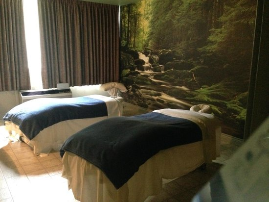 Healing Springs Spa : One of our two Couples massage suites