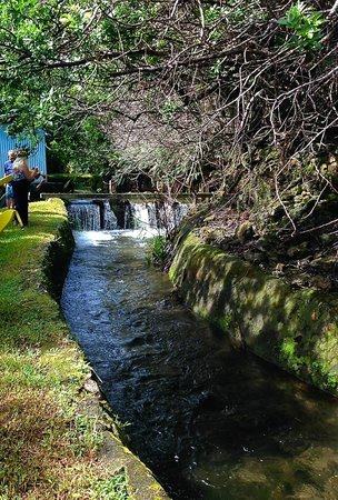 Irrigation Flumes Big Island