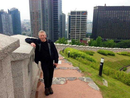 Millennium Seoul Hilton: Namsan Park