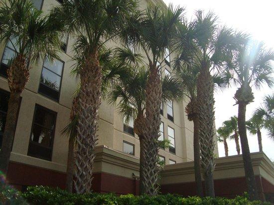 Hampton Inn Orlando International Drive/Convention Center: Hotel Hampton Orlando fundos