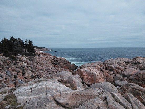 Country Haven Bed & Breakfast: Cape Breton coastline