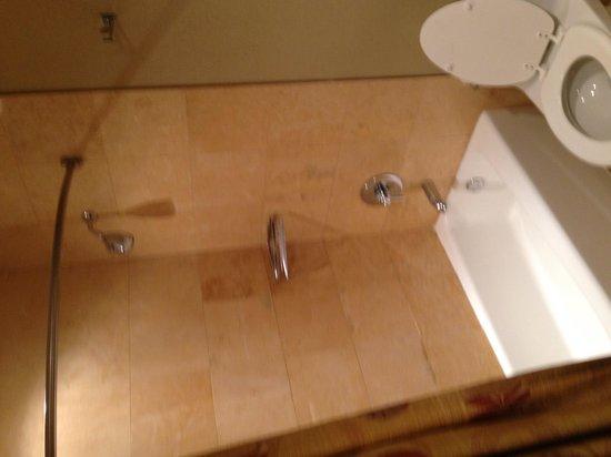 The Inn at Key West : Bathroom