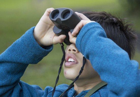 Ecolodge San Luis: Birdwatching