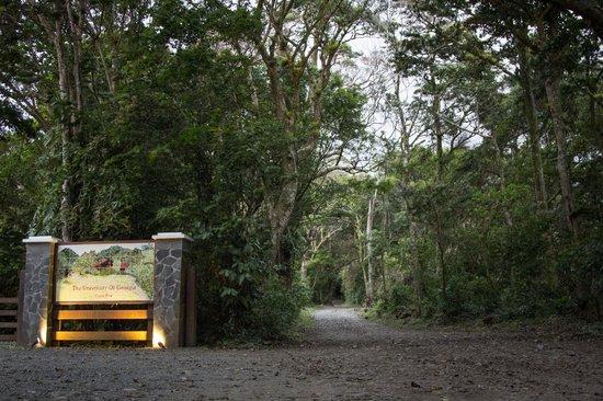 Ecolodge San Luis: Main entrance