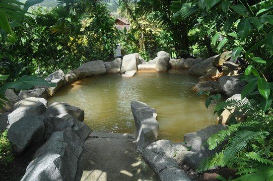 Arenal Paraiso Hotel Resort & Spa: Hot Springs Pool