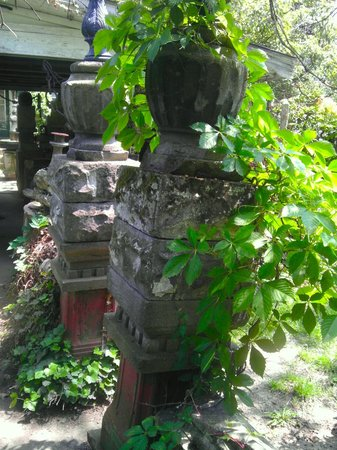 Temple of Tolerance: Backyard entrance from patio