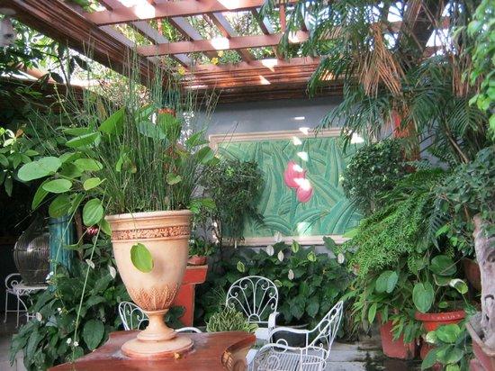 Europa Mansionette Inn: The garden