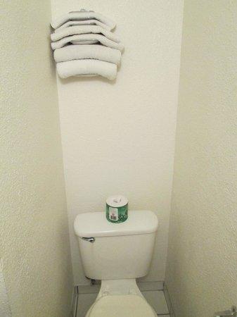 Economy Inn: Toilet