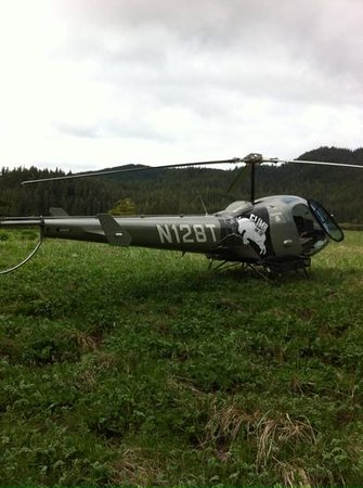 Ketchikan Helicopters: Helicopter tour - Ketchikan.