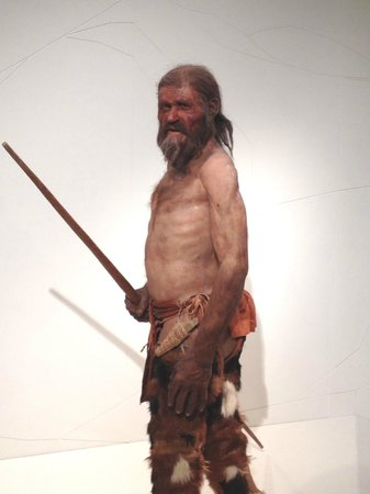 Südtiroler Archäologiemuseum : Otzi- The Iceman