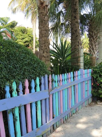 RC Otter's Island Eats: colorful fence by parking lot