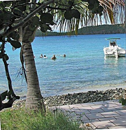 Tamarindo Estates Beach Apartments: Tamarindo Estates snorkeling beach