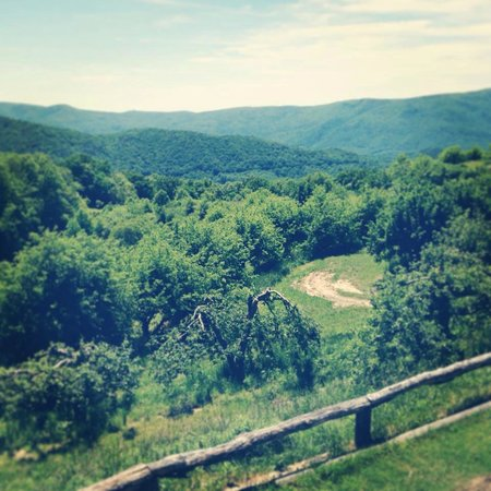 The view from the back porch at The Orchard at Altapass