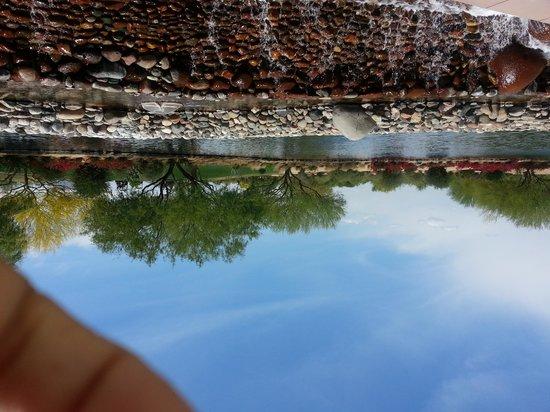 JW Marriott Phoenix Desert Ridge Resort & Spa: View from pool area