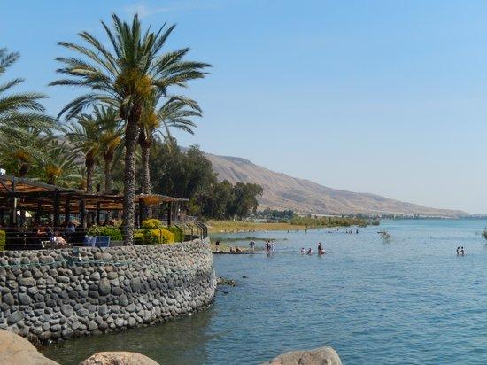 Pina Balev: Galilee