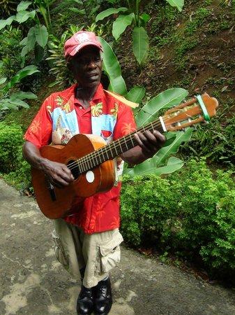 Annandale Falls: Местный гитарист, за доллар сочинит песню именно про Вас