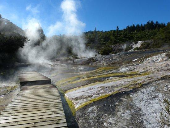 Wai-O-Tapu Thermal Wonderland: Walkway