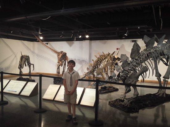 Lafayette Science Museum