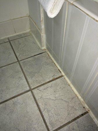 Days Inn Berlin Voorhees: Dirty bathroom floor grout