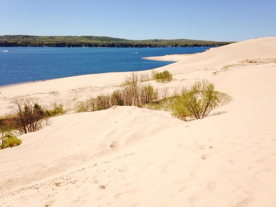 Silver Lake Sand Dunes: Picture 3