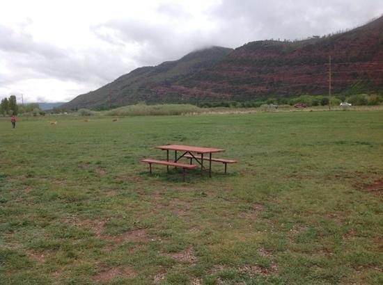 Alpen Rose RV Park: 2 acre dog park.