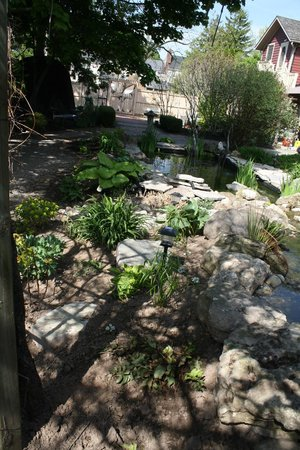 Schoolmaster's House Bed and Breakfast: Enjoy our beautiful gardens with Koi Pond and stream