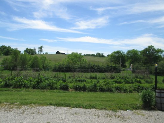 Wildside Winery: Grounds