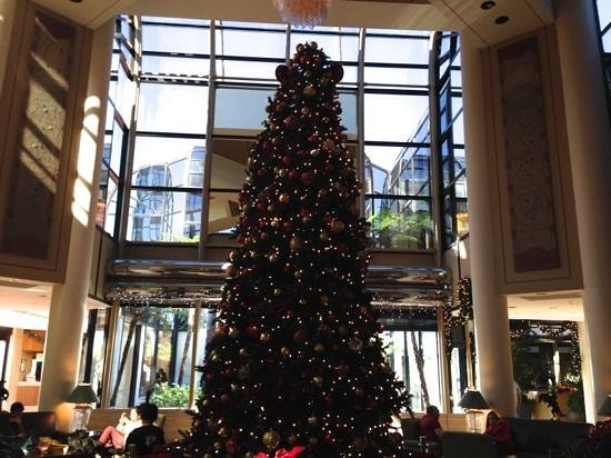Hilton Los Angeles/Universal City : christmas tree in the lobby