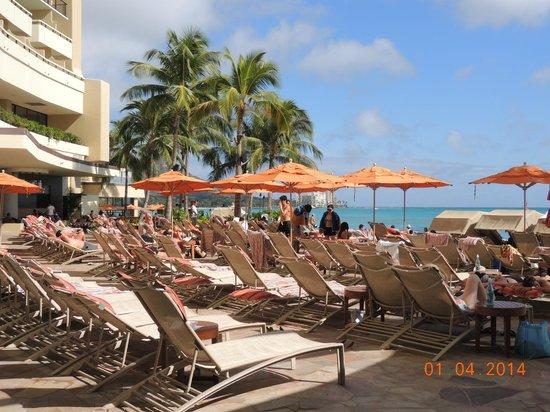 Sheraton Waikiki: Cadeiras da piscina do hotel