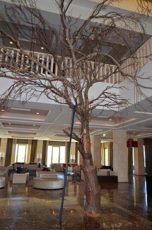 Anantara Vilamoura Algarve Resort: A árvore na entrada-Hotel Tivoli Victoria-Algarve