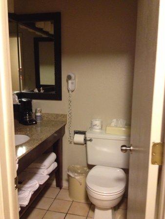 Best Western Sundowner : bathroom small but clean
