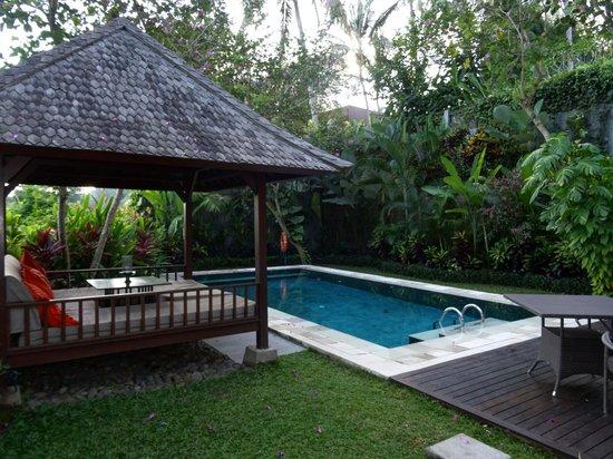The Samaya Bali Ubud: The beautiful pool