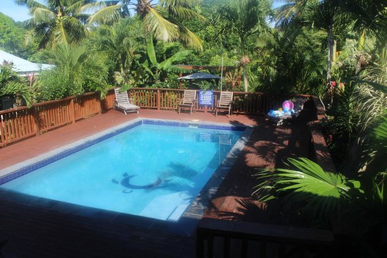 Te Akapuao Holiday Studio Villas 1 & 2: The Beautiful Pool Area