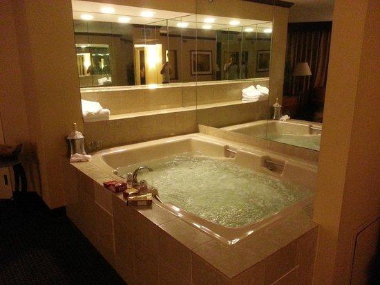 Hilton Minneapolis/St. Paul Airport Mall of America : Huge Whirlpool tub
