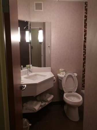 Comfort Inn Monticello : Remodeled Bathroom
