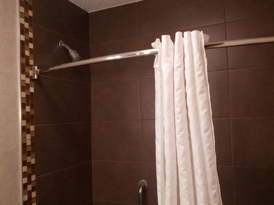 Comfort Inn Monticello : Remodeled Shower