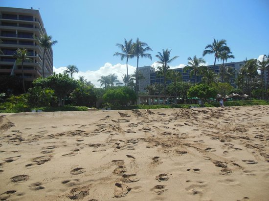 Marriott's Maui Ocean Club  - Lahaina & Napili Towers: beach