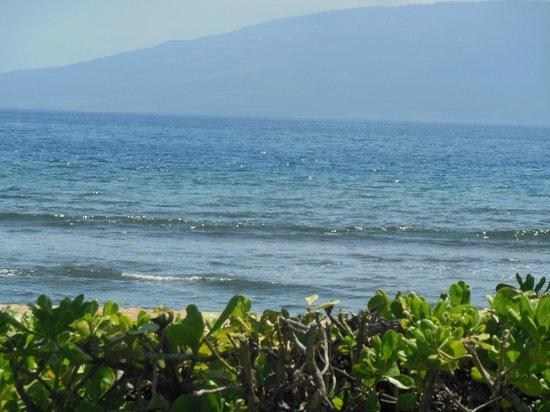 Marriott's Maui Ocean Club  - Lahaina & Napili Towers: surf