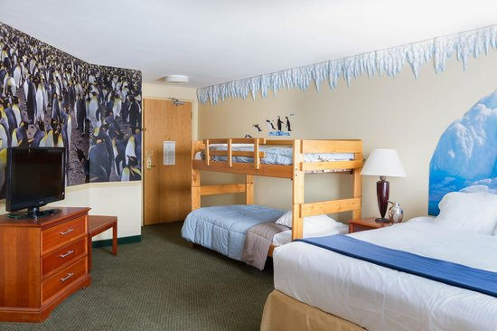 The Kansas City Zoo Themed Room Picture Of 816 Hotel