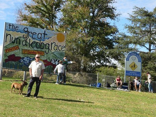 The Great Nundle Dog Race : The hand painted sign for the event
