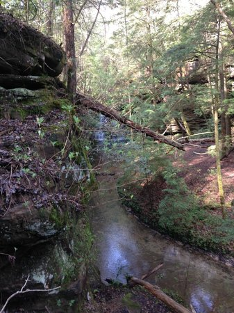 Alabama: tranquil stream