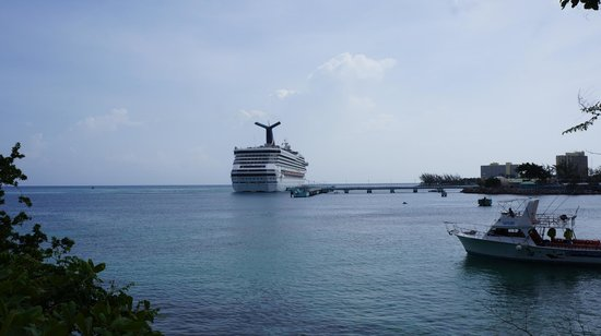 Jamaica Exquisite - Day Tours : Cruise coming in!