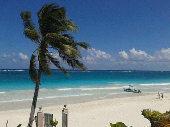 Playa Esperanza : Strand