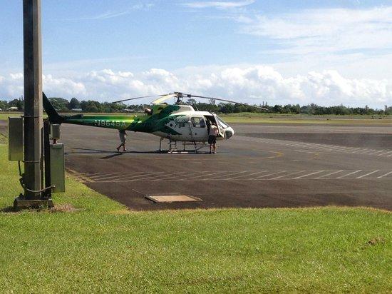 Safari Helicopter Tours: перед посадкой