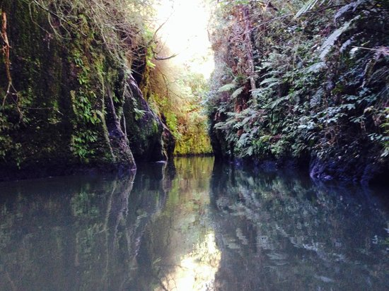 Lake District Adventures: Kayaking in a canyon that appears from nowhere!