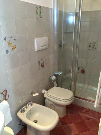 Villa Rosa : Our Shower