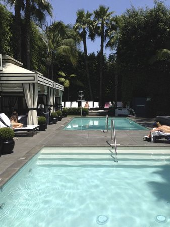 Viceroy Santa Monica : Two dipping pools