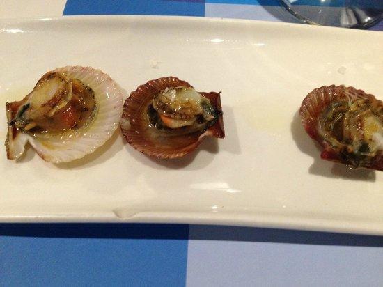 Sa Clova Taverna: small shell