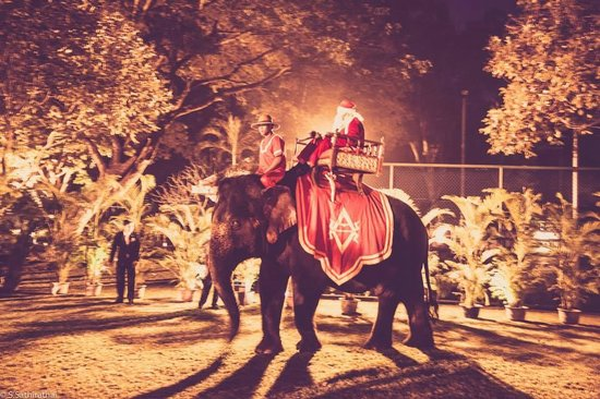Raffles Grand Hotel d'Angkor : Christmas Eve dinner party at the hotel (santa riding an elephant)