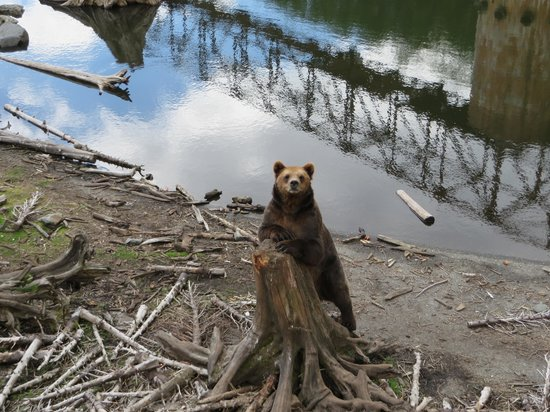 Fortress of the Bear : by the water